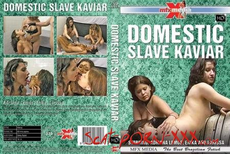 Adriana Lemos, Erika, Larissa - [SD-6009] Domestic Slave Kaviar - MFX Media - Lesbian, Domination [HDRip]